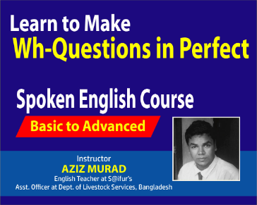 Learn to Make Wh-Questions in Perfect