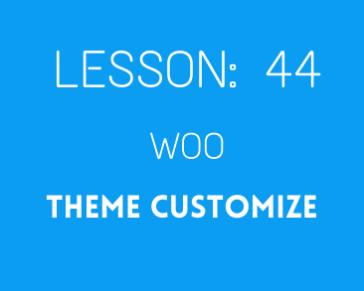 lesson 44. woo theme customize ( part 02)