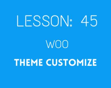 lesson 45 Woo theme customize ( part 03)