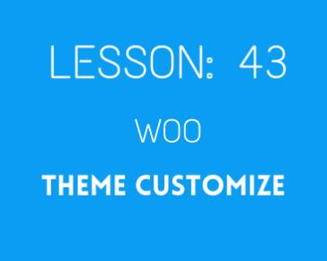 lesson 43 Woocmmerce THeme customize ( part 01)